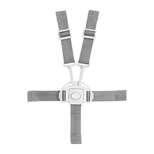 Boon Flair Harness/Buckle - 1