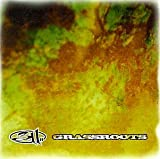 311 - Grassroots