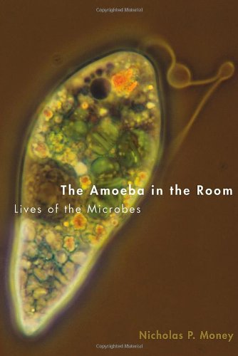 The Amoeba In The Room: Lives Of The Microbes