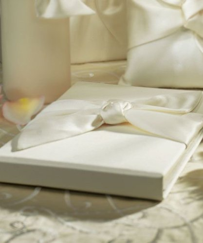 Beverly Clark Tie The Knot Collection Weddingstar Guest Book, Ivory front-272168