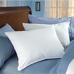 Manchester Mills Down Dreams Standard Pillow Set (2 Pillows)