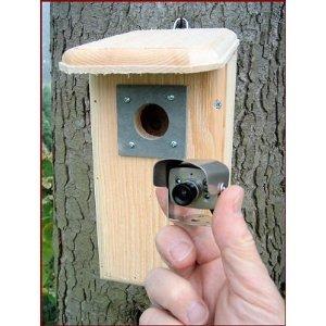 Hawk Eye Nature Cam Pine Wood Birdhouse & Spy Video Camera
