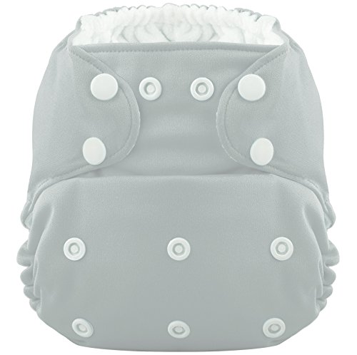 Hero Pocket Cloth Diaper with 2 Microfiber Inserts (Lab Values Made Incredibly Easy compare prices)