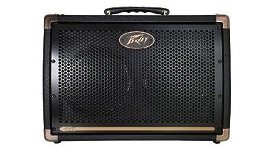 Peavey Ecoustic E208 Acoustic Guitar Amplifier