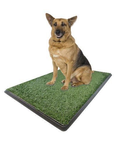Dog Training Bathroom Pad Indoor