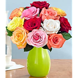 One Dozen Rainbow Mother's Day Roses