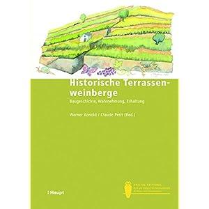 Historische Terrassenweinberge: Baugeschichte, Wahrnehmung, Erhaltung (Bristol-Schriftenre