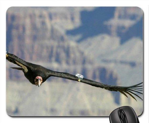 california condor Mouse Pad, Mousepad (Birds Mouse Pad)