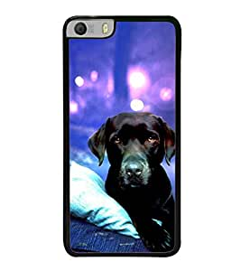 Dog 2D Hard Polycarbonate Designer Back Case Cover for Micromax Canvas Knight 2 E471