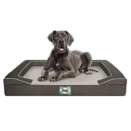 Sealy Dog Bed for Dogs, Modern Gray, X-Large (Sealy Dog Bed Extra Large compare prices)