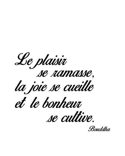 Ambiance-sticker Wandtattoo Le Plaisir, La Joie, Le Bonheur