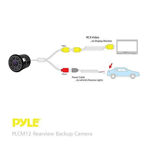PLCM12
