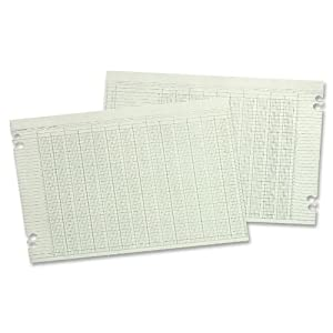 Wilson Jones Green Columnar Ruled Ledger Paper, Double Page Format, 24 Columns and 36 Lines per Page, 11 x 17 Inches, 100 Sheets per Pack (WG50-24A)