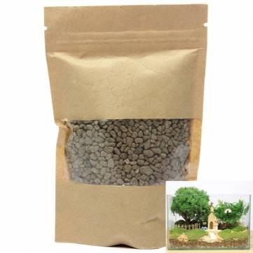 bheema-diy-impermeable-inferior-piedra-mosses-micro-paisaje-ecologia
