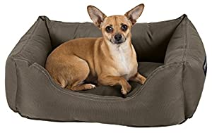 Stainmaster Comfy Couch Pet Bed Small 26 By 19 Inch Olive Pet Supplies
