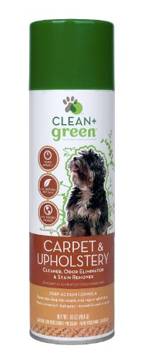 clean-green-carpet-and-upholstery-pet-odor-and-stain-remover-for-dogs-16-ounce