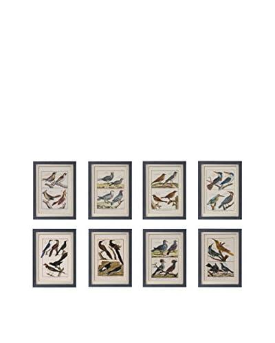Set of 8 Framed Bird Pictures