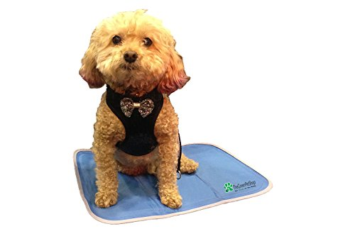 The Green Pet Shop Self Cooling Pet Pad, Small