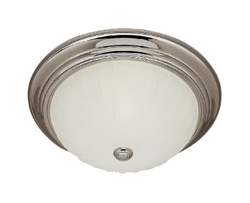 Trans Globe Lighting 13213-1 Bn 2-Light Flush-Mount, Brushed Nickel