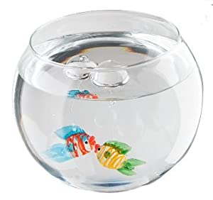 Floating sea world glass fish bowl with glass for Fish bowl amazon