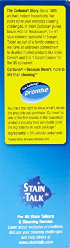 Carbona 2 In 1 Oven Rack And Grill Cleaner Bagged 16 8 Oz