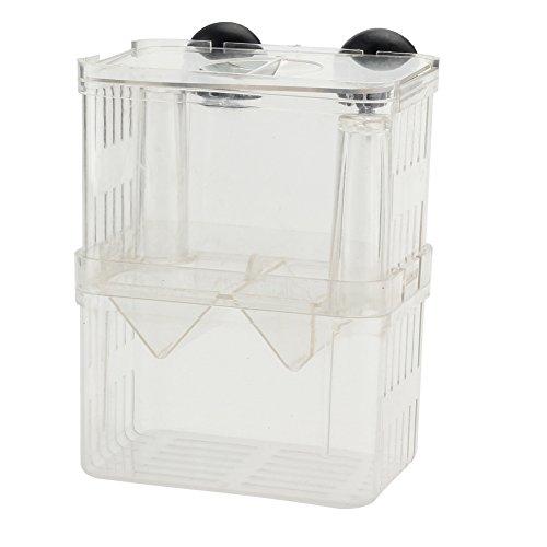 pinzhi-aislamiento-incubadora-flotante-peces-de-acuario-criadero-criador-caja-de-cria-transparent