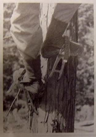 藤井電工 ツヨロン(TSUYORON) 林業用安全帯 昇降用 木登り器 FR-100-JAN-BX
