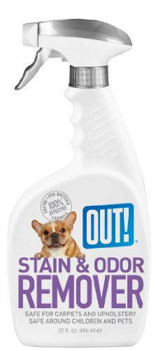 OUT! Pet Stain and Odor Remover, 32 Ounce