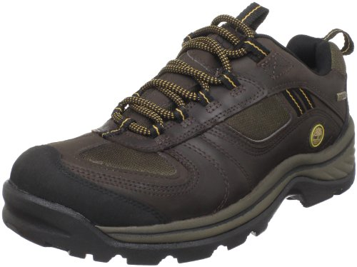 Timberland Men's Chocorua Trail Gore-Tex Low Hiking Boot,Dark Brown,11 W US