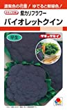 【種子】紫カリフラワー バイオレットクイン 0.7ml