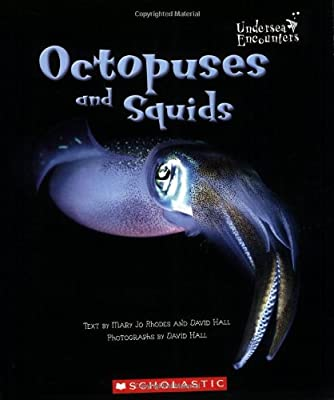 Octopuses-and-Squids-Undersea-Encounters-Paperback-Rhodes-Mary-Jo-amp-Hall