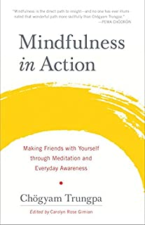 Book Cover: Mindfulness in action : making friends with yourself through meditation and everyday awareness