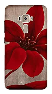 TrilMil Printed Designer Mobile Case Back Cover For Asus ZenFone 3 ZE552KL