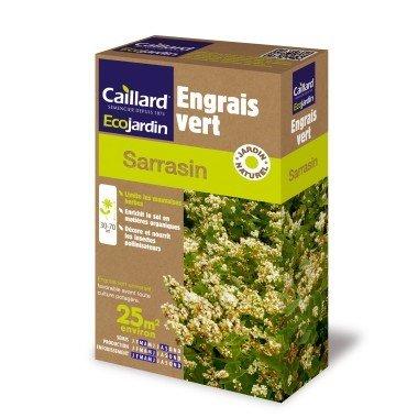 Graines de sarrasin engrais vert écologique naturel (200 grammes)