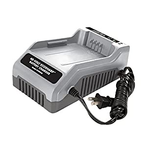 Snow Joe Snow Joe 40-Volt EcoSharp Lithium-Ion Battery Charger from Snow Joe LLC