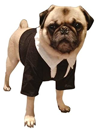 Pet Men In Black II Dog Costume For Small Dogs