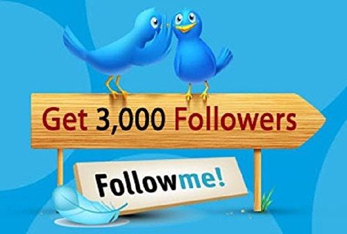 3,000 Twitter Followers