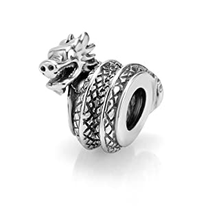 Amazon.com: 925 Sterling Silver Dragon Bead Charm Fits ...