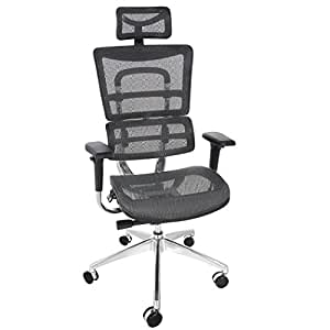 ANCHEER Mount Ergonomic Grey Mesh Computer Chair Shipped From CA