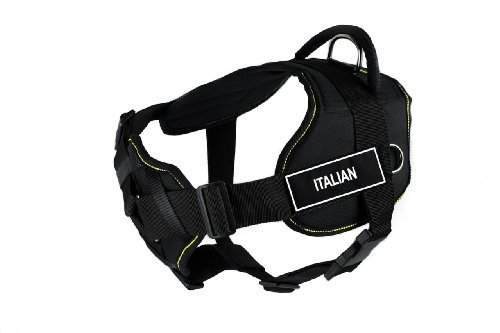 dean-tyler-32-to-107cm-italian-fun-harness-with-padded-chest-piece-large-black-with-yellow-trim