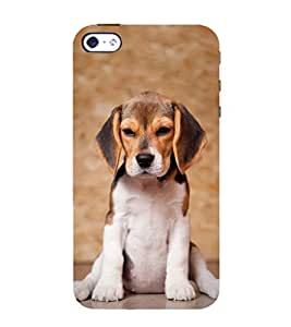 99Sublimation Dog with Big Ears 3D Hard Polycarbonate Back Case Cover for Apple iPhone 5