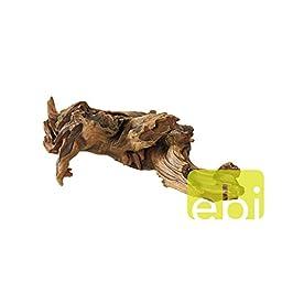 Aqua Della Driftwood, 56 x 23.5 x 22.5cm, Brown