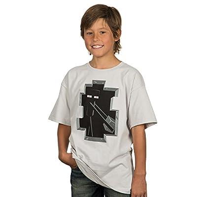 Minecraft Big Boys' Enderman Inside Youth T-shirt