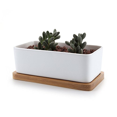 T4U 6.5 Inch Ceramic White Rectangle Sucuulent Plant Pot/Cactus Plant Pot With Bamboo Tray (Planter Pots Indoor compare prices)