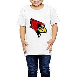 Unisex FIHII Unique Illinois State Redbirds Short Sleeve Tshirts