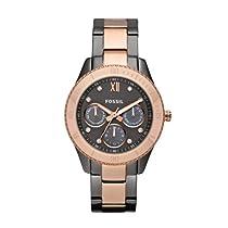Fossil Watch es3100
