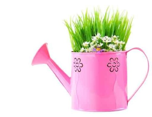 Watering Can of Fresh Spring Wild Flowers - 18