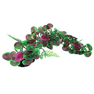 Purple Green Artificial Grass Ornament for Fish Tank 20cm High