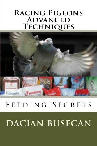 Racing Pigeons Advanced Techniques: Feeding Secrets