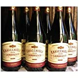 カビッキオーリ ランブルスコ ロッソ ドルチェ (イタリア 甘口 デイリー赤泡ワイン ) 6本セット